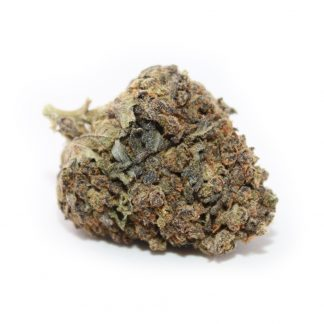 Amnesia-Purple-Punch-Bild1