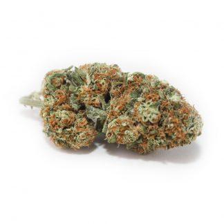 CBG-Orange-Bud