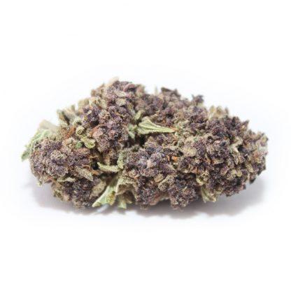 Purple-Haze-HQ-Bild1